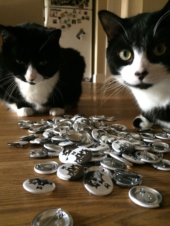Two tuxedo cats pose with hundreds of pins
