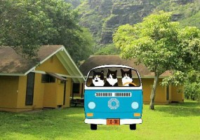 Cartoon image of TuxedoTrio in Dharma Initiative Volkswagon bus