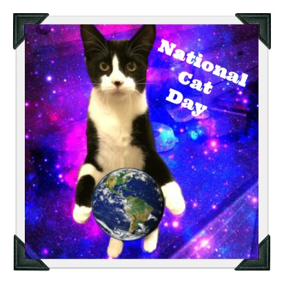 "Photoshopped image shows tuxedo cat holding earth between front paws with galaxy background. Text reads ""National Cat Day"""