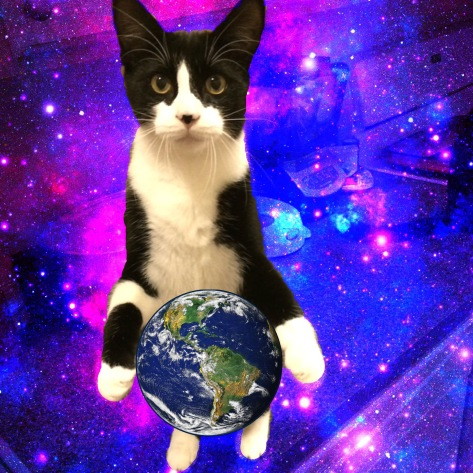 Photoshopped image shows tuxedo cat holding earth in his front paws with galaxy background