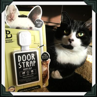 Cat sits next to Door Buddy Door Strap